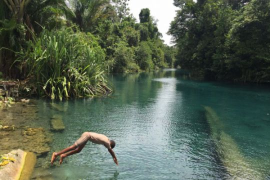 Warga Papua gelar demo  tuntut hutan adat