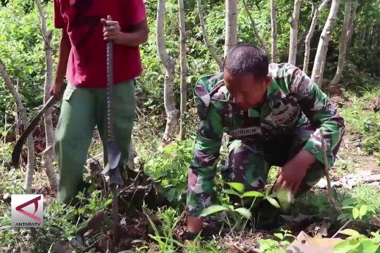 TNI Ajak Masyarakat Tanam Pohon Buah