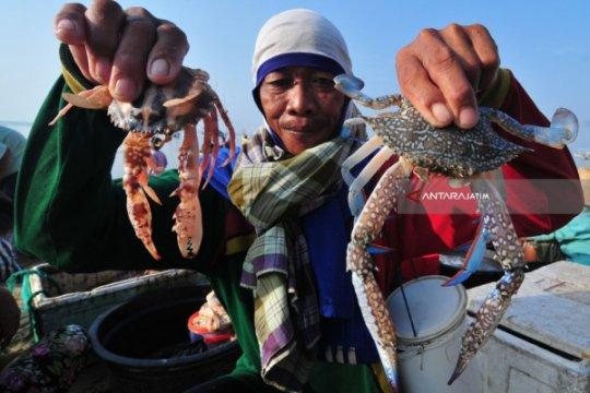 APRI bantu ketelusuran rantai pasok perikanan bagi nelayan rajungan