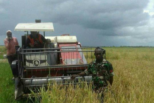 Papua Nugini jajaki pembelian beras langsung dari Merauke
