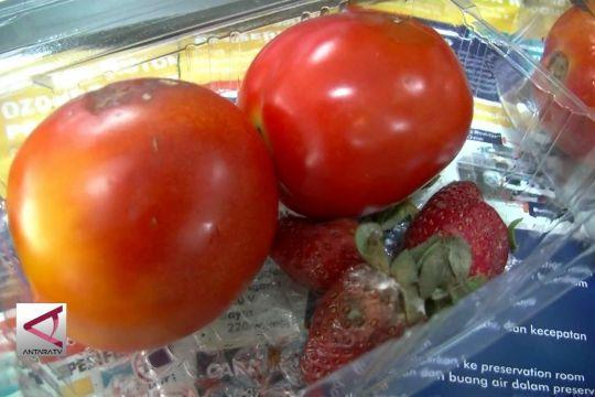 Oozter bebaskan buah dan sayur dari mikroba