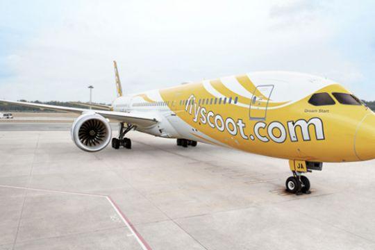 Maskapai Scoot buka penerbangan murah Indonesia-Jeddah