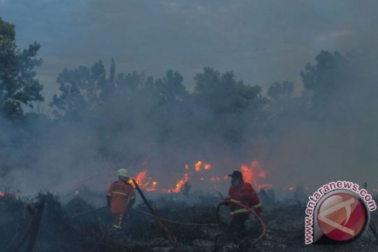 Riau pertimbangkan perpanjang status siaga kebakaran hutan-lahan