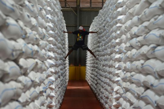 Bulog Maluku datangkan 7.000 ton beras