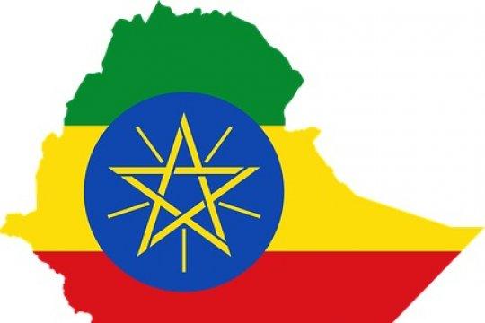 Kepala staf tentara Ethiopia tertembak