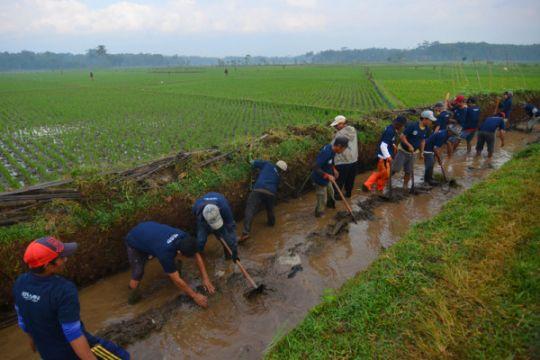 DPRD-Pemkot Palu sepakati upah padat karya Rp300 ribu