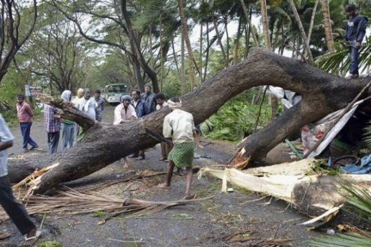 21 orang tewas akibat hujan badai di India