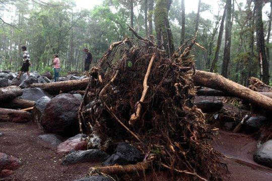 Hujan lebat, waspadai potensi banjir dan longsor