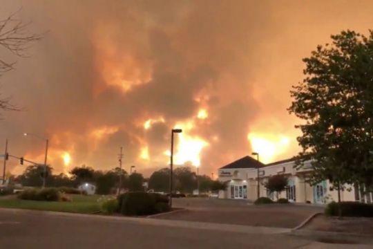 Petugas terus cari 1.276 orang hilang dalam kebakaran California