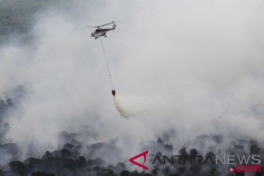 BNPB kerahkan 10 helikopter padamkan karhutla di Kalbar