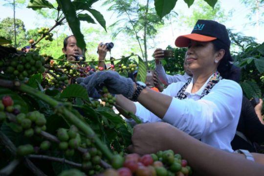 Menteri BUMN fasilitasi akses lahan bagi petani Sukabumi