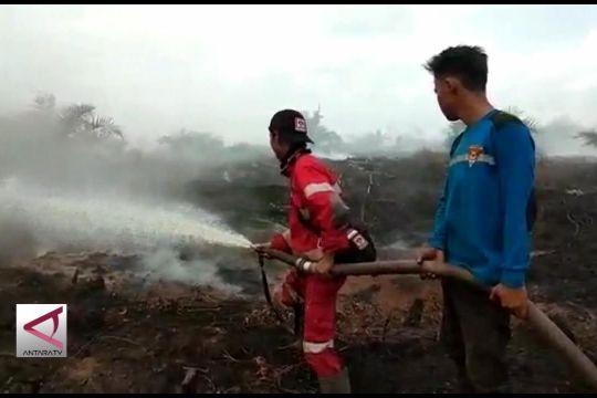 Tim Karhutla berusaha padamkan 200 Ha lahan di Kapuas