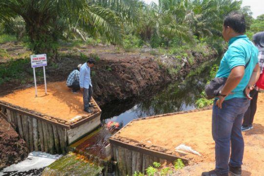 Kepala Staf Kepresidenan dorong agrowisata sekat kanal lahan gambut