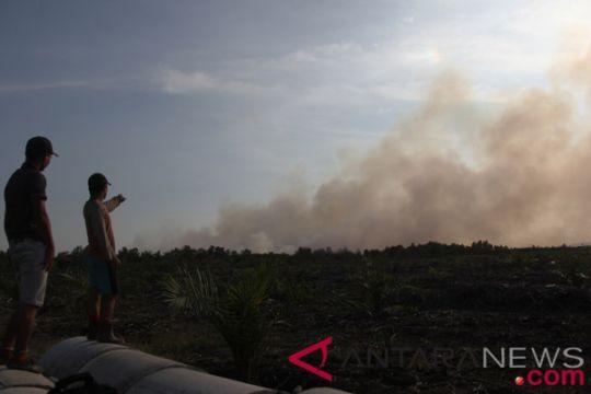 BMKG deteksi 80 titik panas di Riau