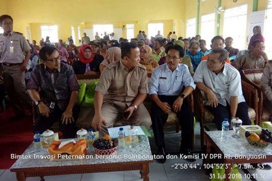 Komisi IV DPR buka Bimtek Inovasi Peternakan Ayam KUB di Banyuasin