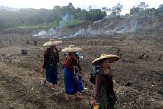 Pemuka Badui minta Presiden bantu tambahan lahan