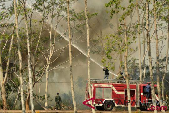 Kebakaran hutan komplek Rindam Kodam Iskandar Muda