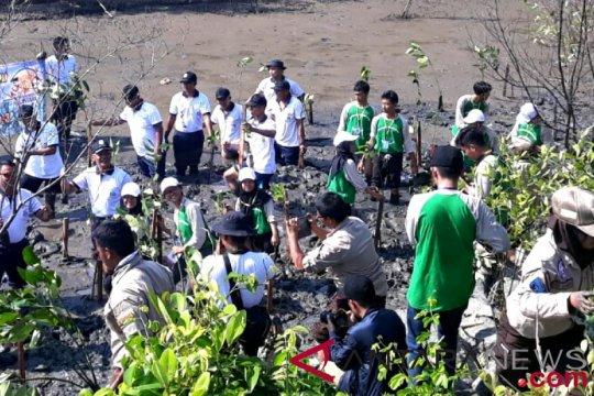 SMN asal Jakarta pelajari hutan mangrove Tarakan