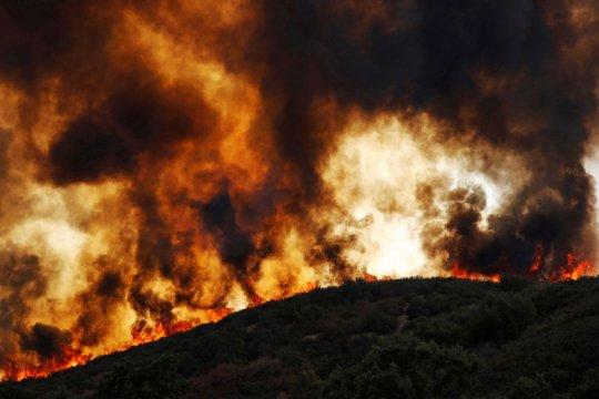 Sembilan tewas dalam kebakaran hutan di California, Malibu terancam