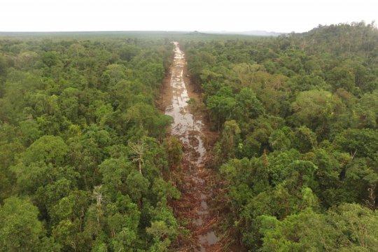 Kalsel segera tetapkan kawasan ekosistem esensial