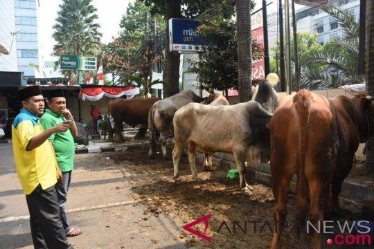 LAZISNU salurkan 238 hewan kurban, termasuk sumbangan Presiden Jokowi