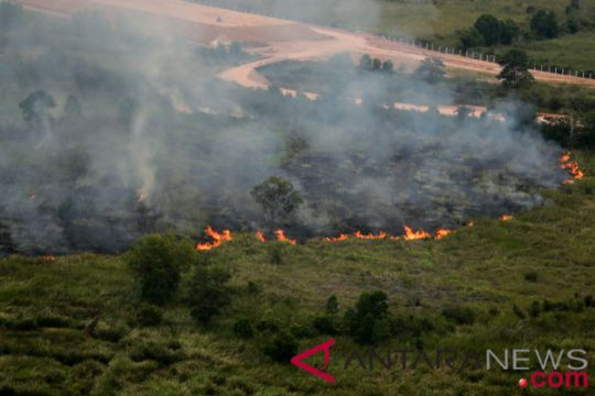 Kebakaran Lahan Di Pemulutan