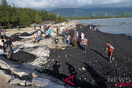 Bersihkan Tumpahan Batu Bara Cemari Pantai