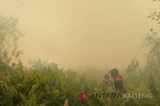 Kebakaran lahan mulai marak terjadi di Palangka Raya