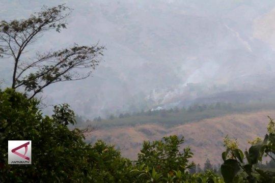 Kebakaran di lereng Gunung Ciremai diperkirakan 50 ha