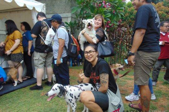 KPKP Jaktim berencana serahkan anjing tewaskan ART ke polisi
