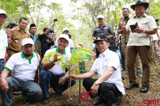 Koridor satwa Batangtoru diperkaya pepohonan lokal baru