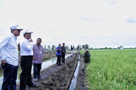 Jatam sarankan Kementan evaluasi berkurangnya lahan pertanian