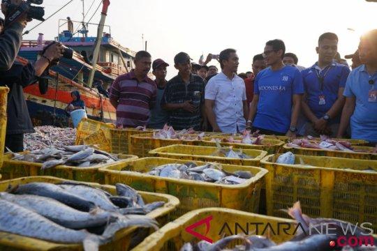 Sandiaga kunjungi tempat pelelangan ikan di Tegal