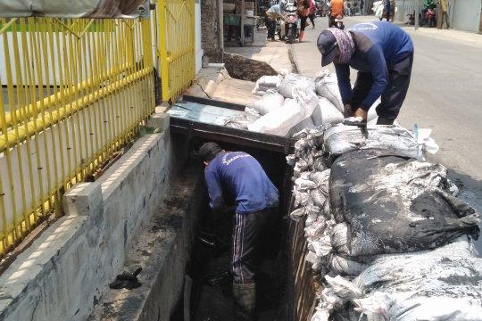 """Tamu"" Jakarta saat musim hujan"