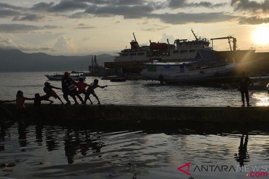 Aktivitas Bongkar Muat di Pelabuhan Wani Donggala