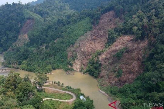 Aksi perambahan hutan sebabkan kerusakan TNKS