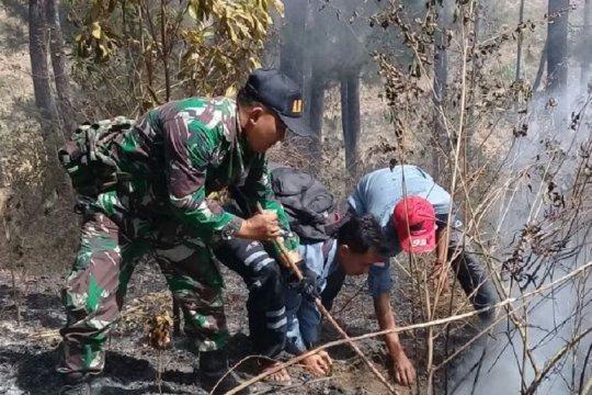 Kebakaran hutan di lereng Sumbing berhasil dipadamkan