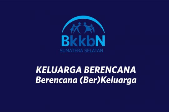 BKKBN: keluarga Indonesia butuh penanganan spesifik