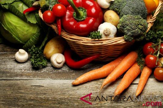 Konsistensi petani kembangkan pangan organik