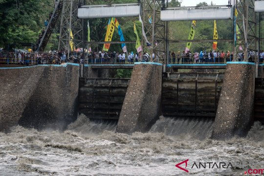 Diguyur hujan, 616 hektare sawah di Pekalongan-Jateng terendam banjir