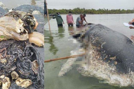 PKS Muda: Indonesia darurat sampah plastik