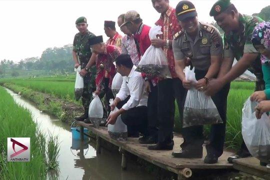 Temanggung genjot produksi benih ikan