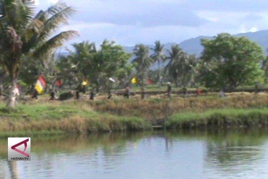 """Mengenal budaya awal turun sawah di Pangkep, """"Mappalili"""""""