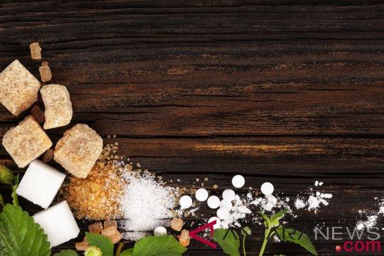 Panduan memahami istilah gula dan pemanis buatan
