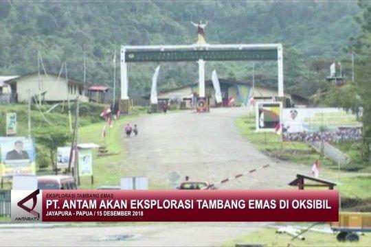 PT Antam akan eksplorasi tambang emas Papua