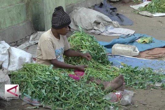 Data survei untuk pembangunan manusia  di  Papua