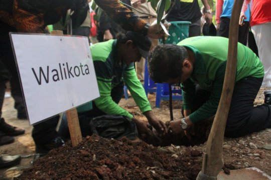 Gerakan satu juta pohon pulihkan resapan air Jaksel