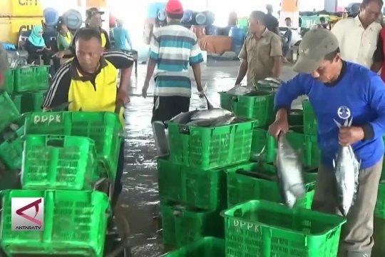 Pekalongan kekurangan pasokan ikan laut