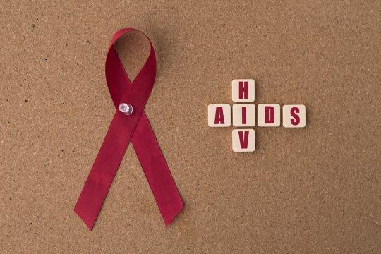 Perspektif nanobioimunogenomik HIV/AIDS