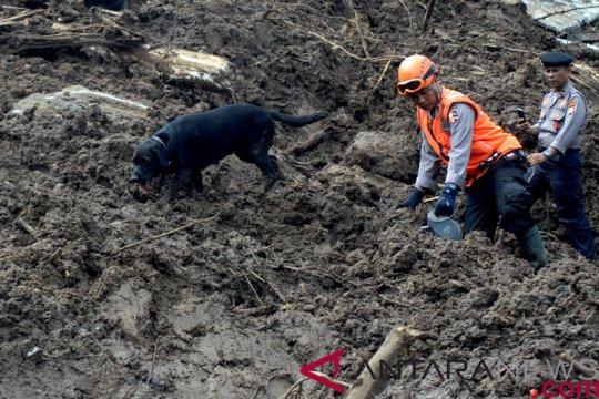 15 korban banjir bandang Kabupaten Jayapura ditemukan dengan bantuan anjing pelacak Tim K-9